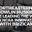 Northeastern's Howlin Huskies are leading the way for NCAA innovation with BriziCam